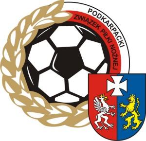 logo_zpn